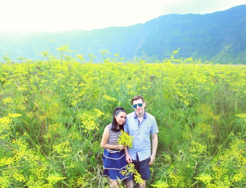 Bromo Prewedding of P&L